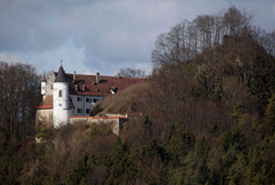cage_germany_castle